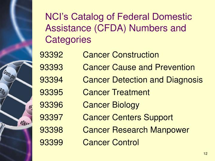 NCI's Catalog of Federal Domestic Assistance (CFDA) Numbers and Categories