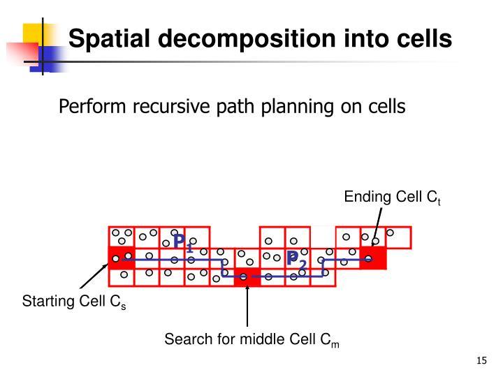 Spatial decomposition into cells