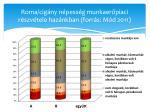 roma cig ny n pess g munkaer piaci r szv tele haz nkban forr s m d 2011