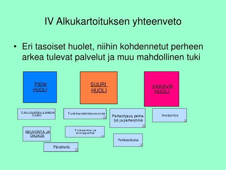 IV Alkukartoituksen yhteenveto