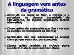 a linguagem vem antes da gram tica