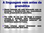 a linguagem vem antes da gram tica2