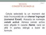 ms excel concepte de baz 4