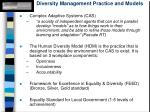 diversity management practice and models