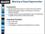 meaning of equal opportunities