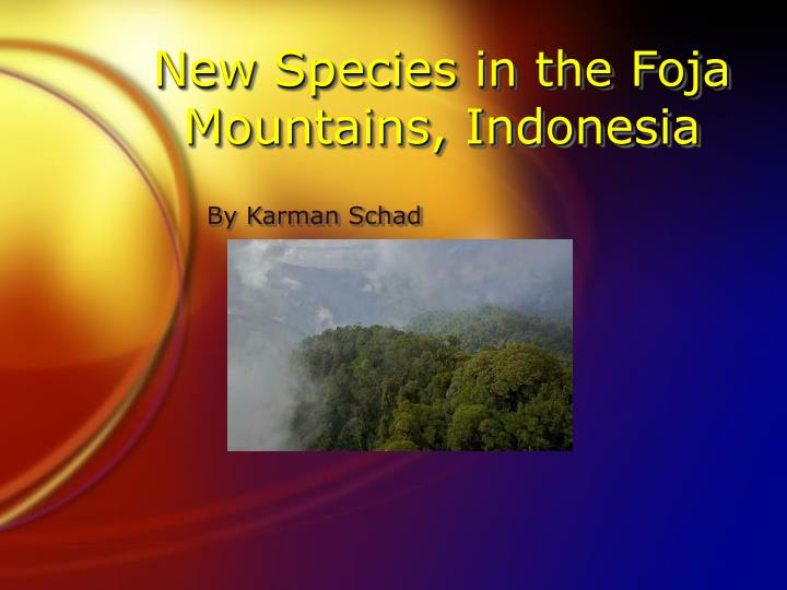 new species in the foja mountains indonesia n.