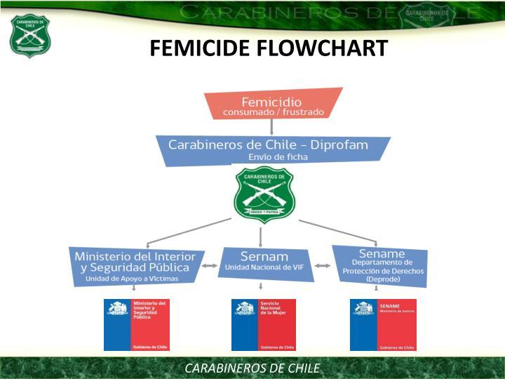 FEMICIDE FLOWCHART
