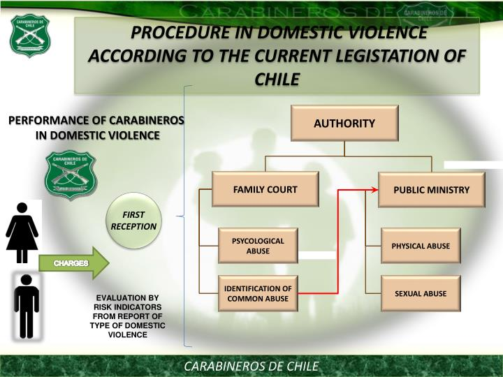 PROCEDURE IN DOMESTIC VIOLENCE ACCORDING TO THE CURRENT LEGISTATION OF CHILE