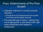 fosu determinants of pro poor growth