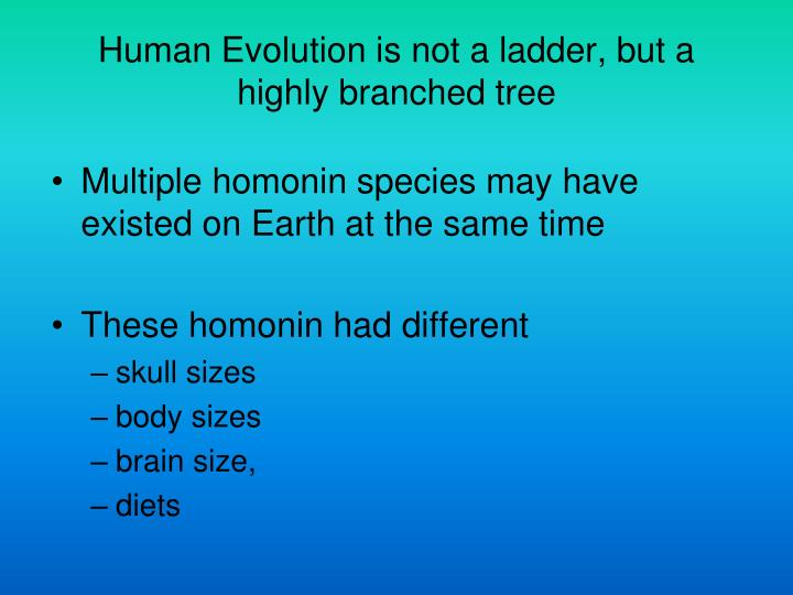 Human Evolution is not a ladder, but a highly branched tree