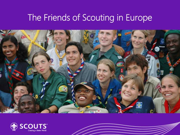 the friends of scouting in europe n.