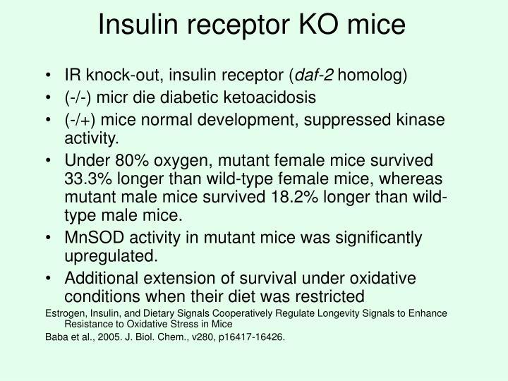 Insulin receptor KO mice