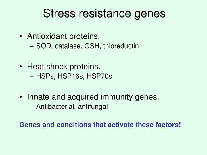 Stress resistance genes