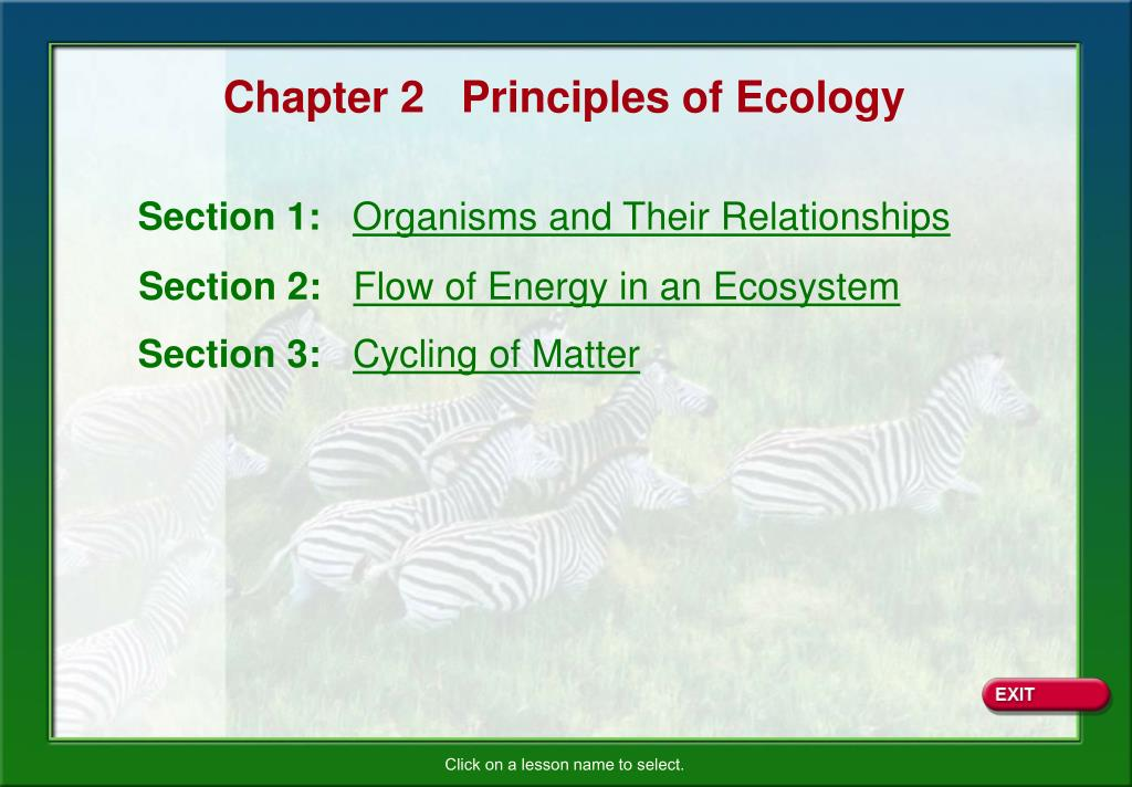 PPT - Chapter 2 Principles of Ecology PowerPoint ...