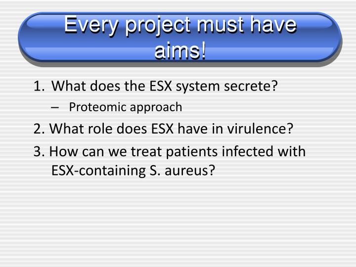 Every project must have aims!