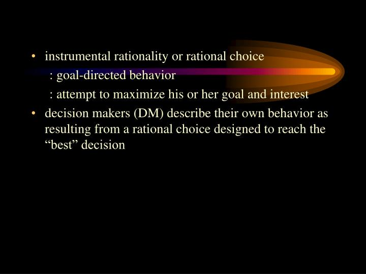 instrumental rationality or rational choice