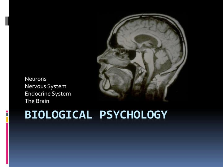 PPT Biological Psychology PowerPoint Presentation ID 4118911