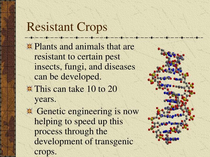 Resistant Crops