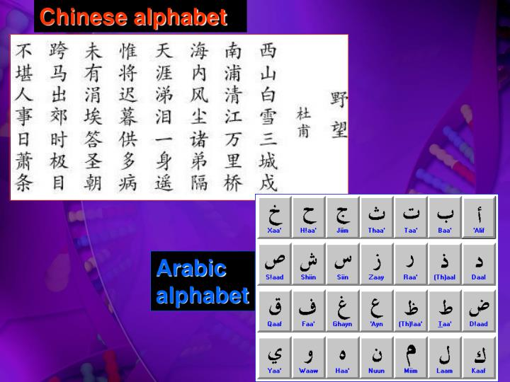 Ppt dna blueprint for life powerpoint presentation id4121653 chinese alphabet malvernweather