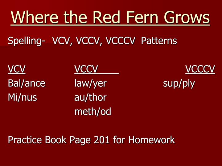 where the red fern grows essay