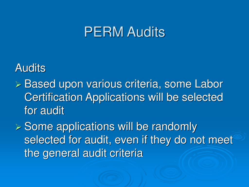 Perm Audit Reasons