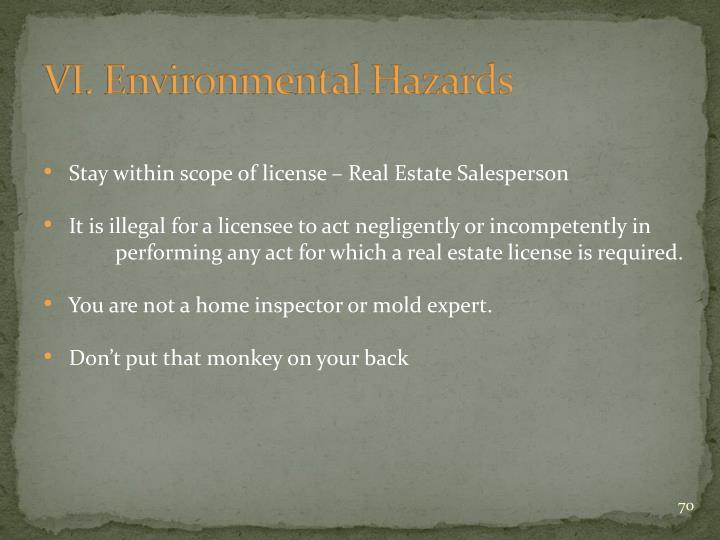 VI. Environmental Hazards