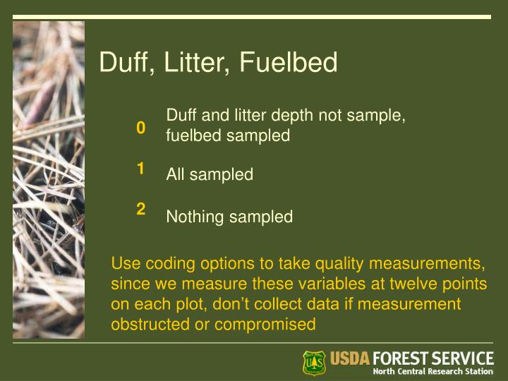 Duff, Litter, Fuelbed