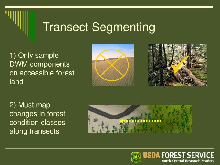 Transect Segmenting