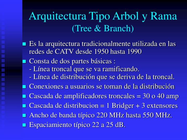 Arquitectura tipo arbol y rama tree branch