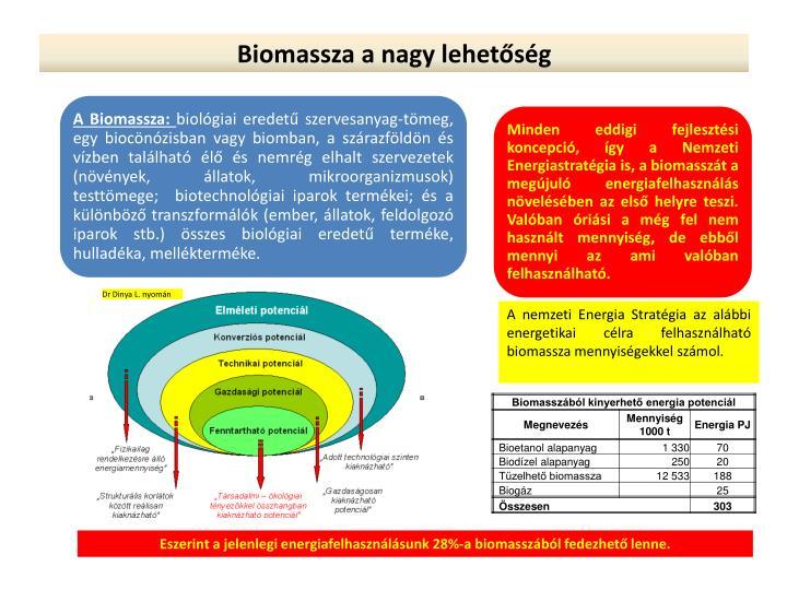 Biomassza a nagy lehetőség