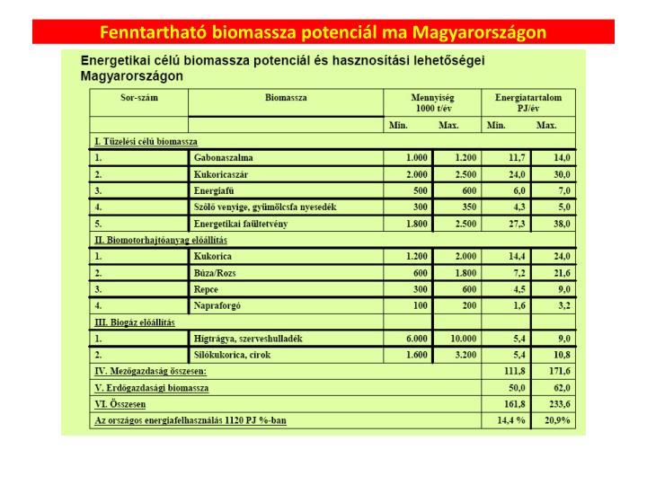 Fenntartható biomassza potenciál ma Magyarországon