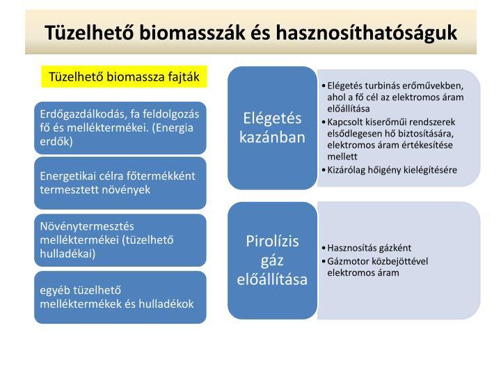 Tüzelhető biomasszák és hasznosíthatóságuk