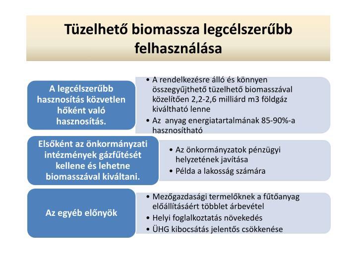 Tüzelhető biomassza legcélszerűbb felhasználása