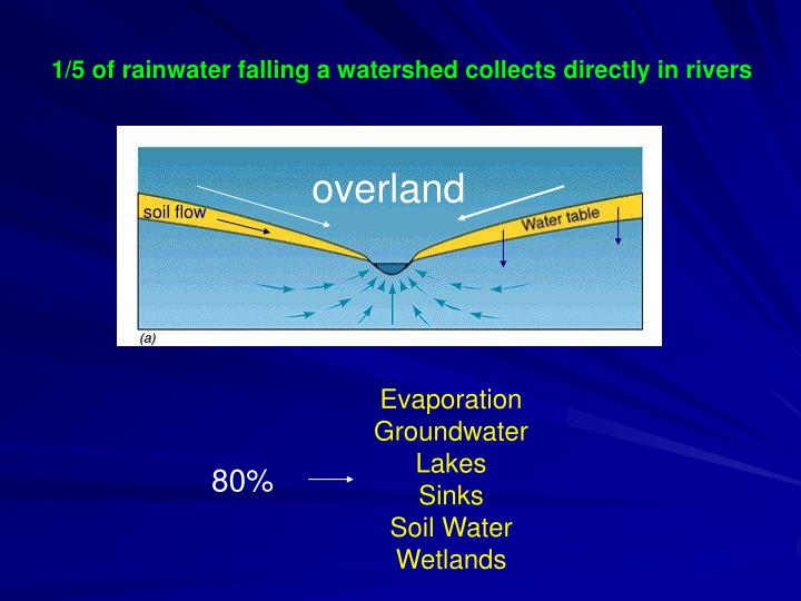 1/5 of rainwater falling a watershed collects directly in rivers