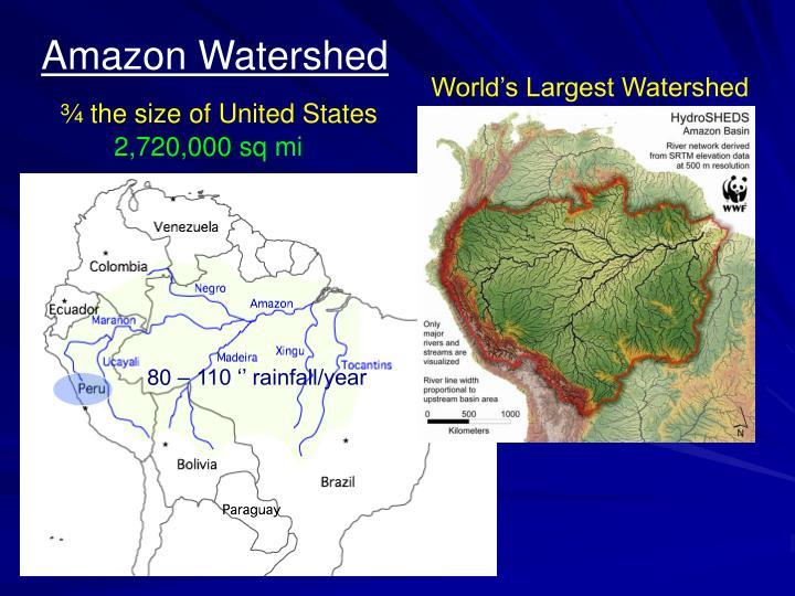 Amazon Watershed