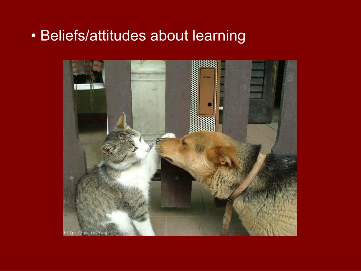 • Beliefs/attitudes about learning
