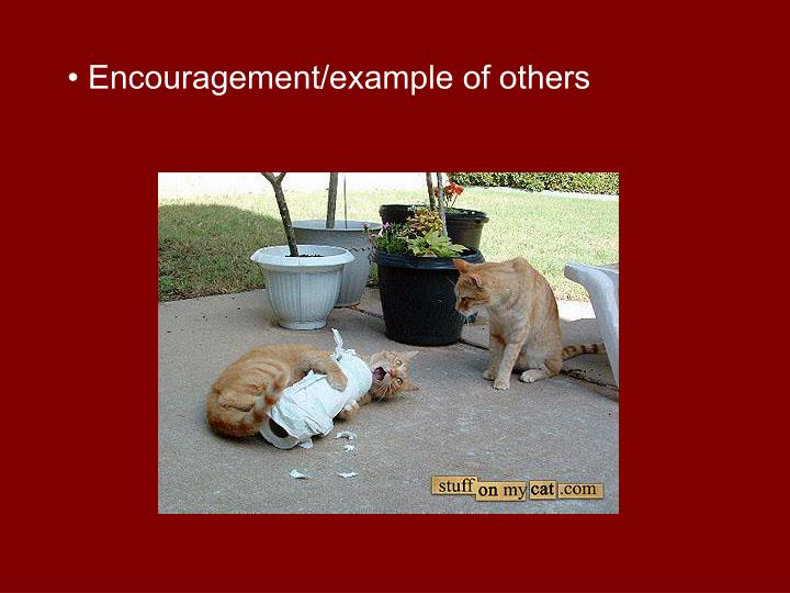 • Encouragement/example of others