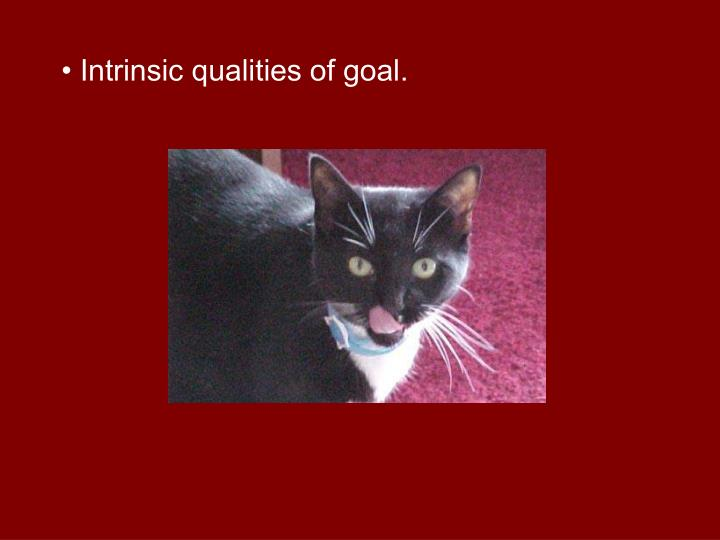 • Intrinsic qualities of goal.