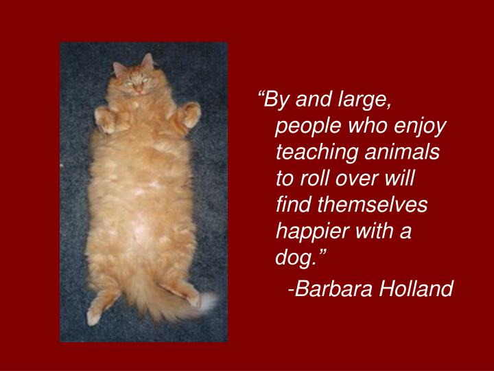 """By and large, people who enjoy teaching animals to roll over will find themselves happier with a dog."""