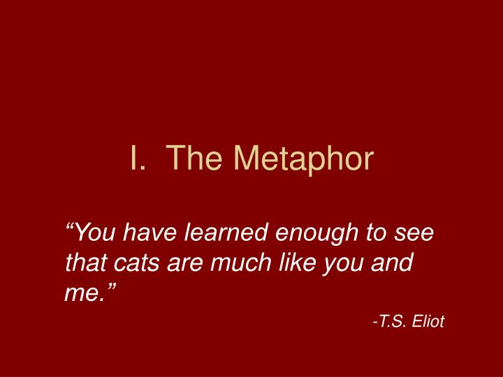 """You have learned enough to see that cats are much like you and me."""
