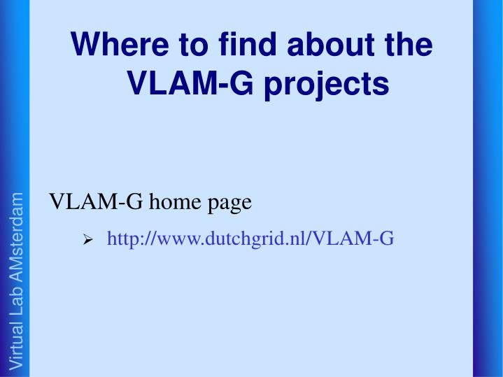 Where to find about the VLAM-G projects