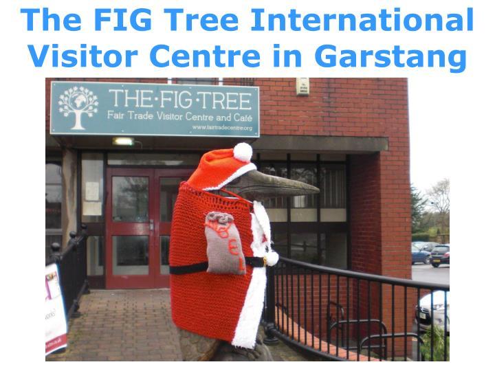 The FIG Tree International