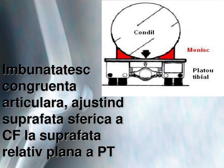 Imbunatatesc congruenta articulara, ajustind suprafata sferica a CF la suprafata relativ plana a PT