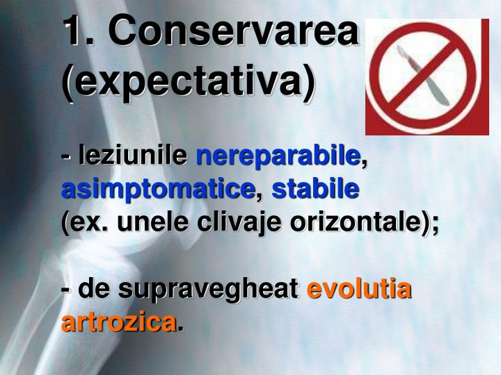 1. Conservarea (expectativa)