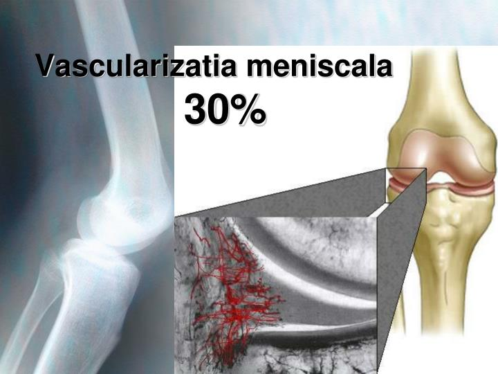 Vascularizatia meniscala