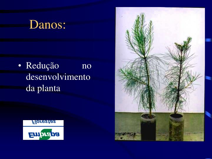 Danos: