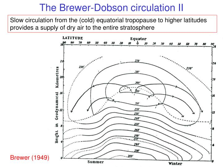 The Brewer-Dobson circulation II