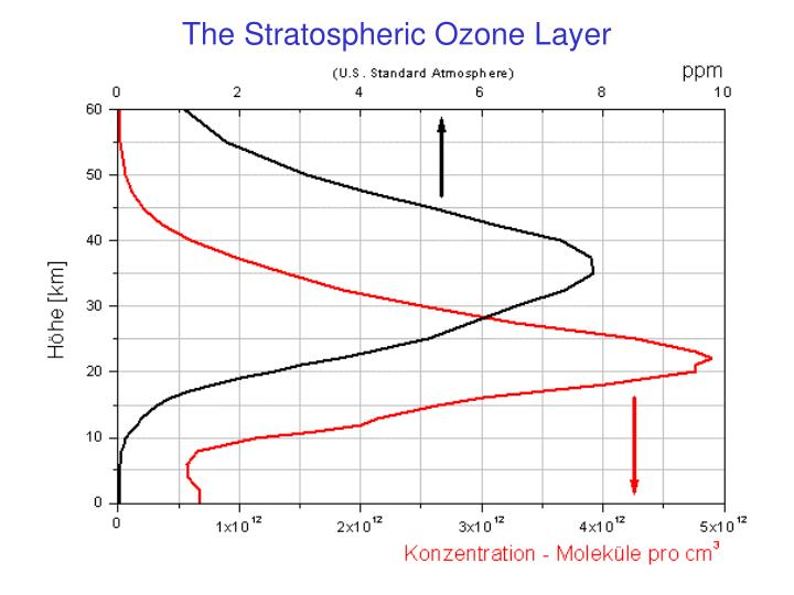 The Stratospheric Ozone Layer