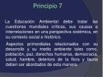 principio 7