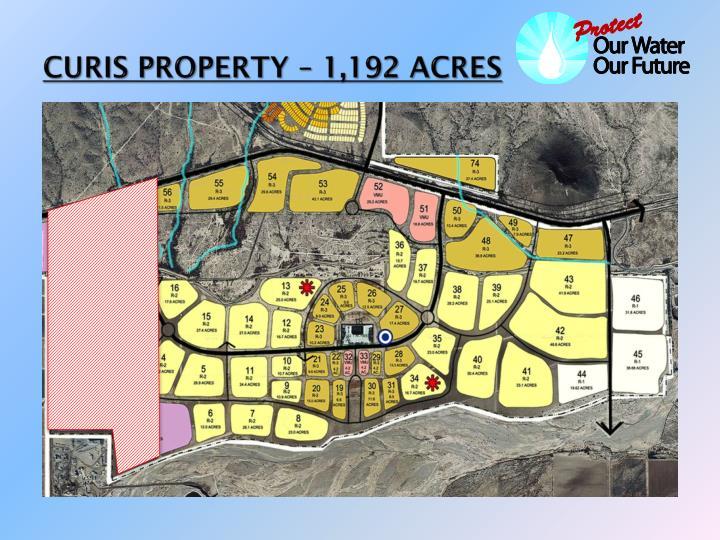 CURIS PROPERTY – 1,192 ACRES